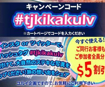 受付終了!全員&全ツアー$5割引!【今すぐ使える キャンペーンコード #tjkikakulv】